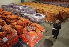 Овощных баз в Москве станет меньше